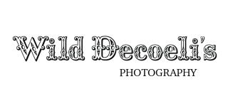 Wild Decoeli's Photography